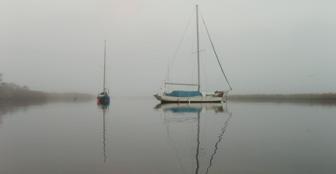 Anchored sailboats in Scipio Creek