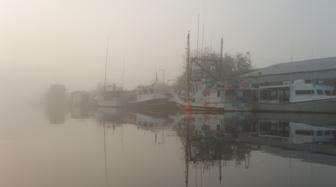 Derelict boats along Scipio Creek