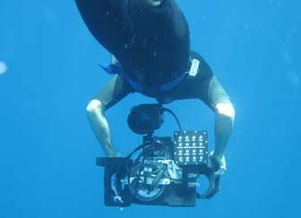 Luis Underwater Video