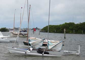 Trimaran Shark Bait