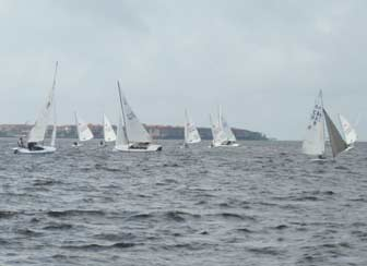 Small Sailboat Fleets