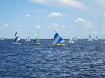 Small Sailboat Fleet