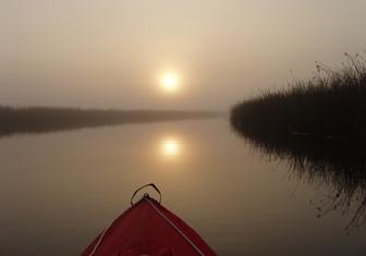 Sunrise over the bayou
