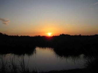 Sunset November 17, 2011