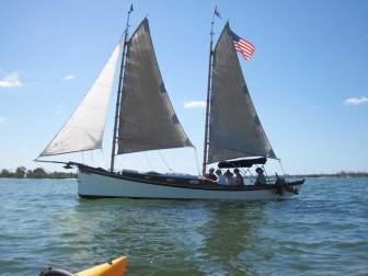 Egret Sailing