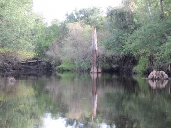 Prairie Creek High Water