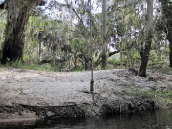 Prairie Creek Rope Swing