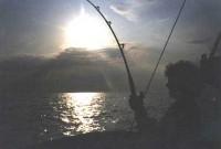 Oil Rig Fishing